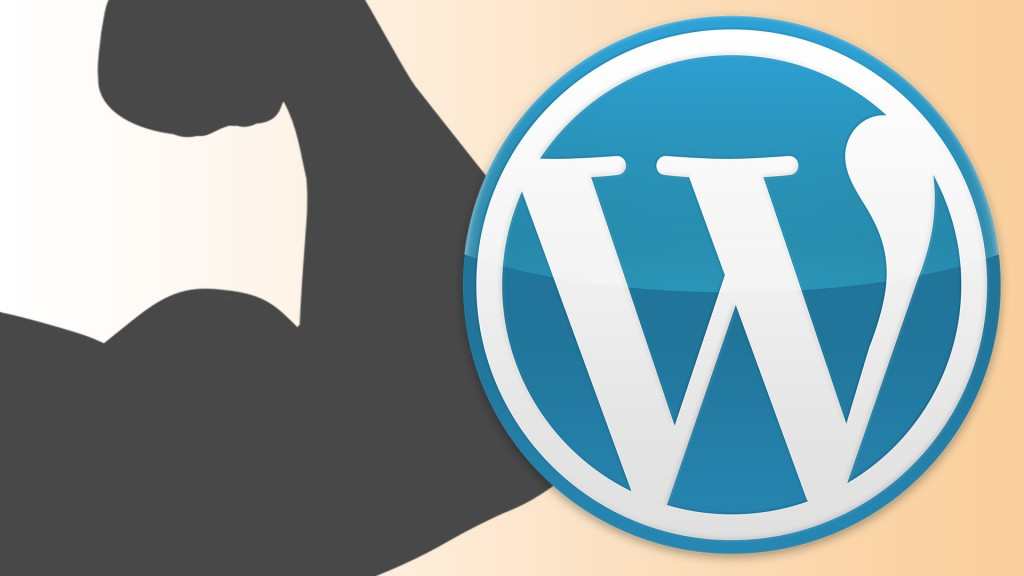 Fuerza bruta WordPress